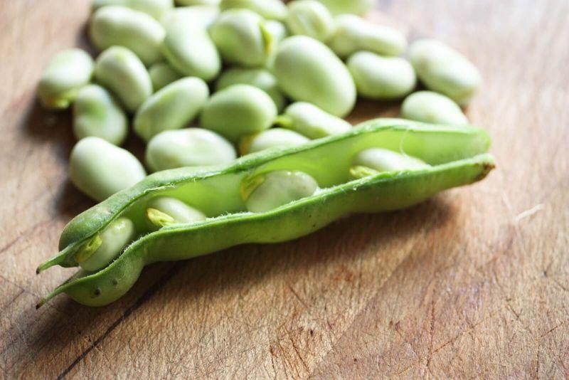 buncis sayur kacang diet