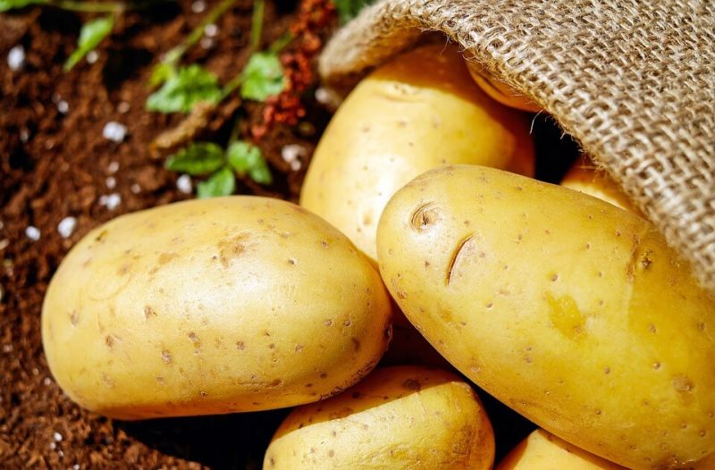 kentang diet Makanan untuk mengecilkan perut buncit
