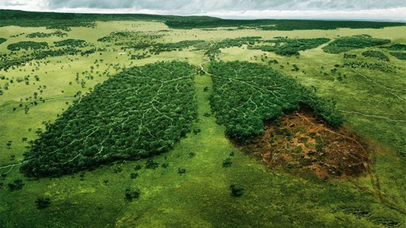Pengertian AMDAL beserta Tujuan dan Manfaatnya Bagi Lingkungan Hidup
