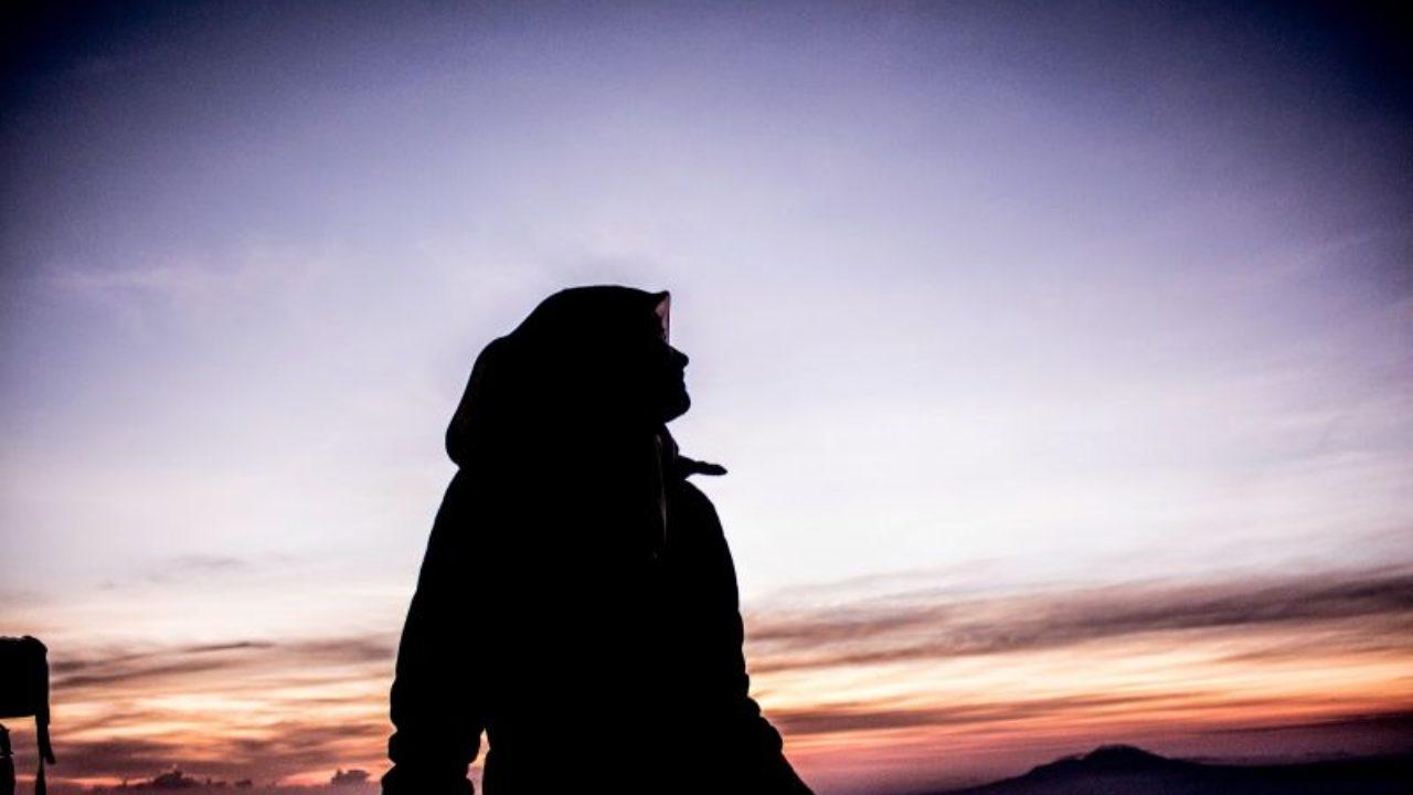 50 Gambar Siluet Wajah Hewan Hijab Dan Pohon Yang Menakjubkan