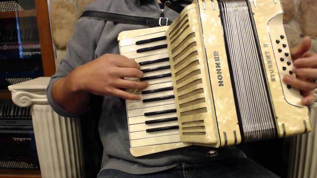 12 Contoh Gambar Alat Musik Melodis Beserta Cara Memainkannya
